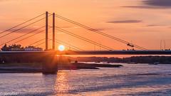 Sunset at the rhine in Düsseldorf (patuffel) Tags: theodor heuss brücke düsseldorf dusseldorf duesseldorf sunset sonnenuntergang rhein rhine river water leica m10 summicron 50mm robert lehr ufer robertlehrufer bridge rheinpark golzheim dpd dachser truck ship