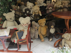 Teddy bears in Vienna (2 of 2) (jimsawthat) Tags: reflection windowdisplay teddybears urban vienna austria