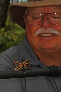 Jimmy and Eastern Lubber Grasshopper - Romalea microptera, Mississippi Sandhill Crane National Wildlife Refuge, Gautier, Mississippi