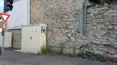 Herbe rue du Port