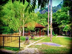 Forest Research Institute Malaysia (FRIM), 68100 Kuala Lumpur, Federal Territory of Kuala Lumpur https://goo.gl/maps/ERcx1ggtM1N2  #vakantie #reizen #voyage #viaggio #viaje #resa #Semester #Fiesta #Vacanza #Vacances # #大自然 #nature #自然 #طبيعة #자연 #Alam #пр (soonlung81) Tags: trip طبيعة natural 自然 kualalumpur วันหยุด vacanza путешествие malaysia 휴일 vakantie resa natuurlijk 馬來西亞 alam 旅行 reise 馬來西亞旅行 nature природа semester naturel naturale ธรรมชาติ natürlich 여행 asian voyage 大自然 reizen 度假 traveling urlaub ホリデー 자연 การเดินทาง праздник holiday natuur 亞洲 vacances fiesta viaggio viaje travel