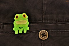 pocket frog (notatoy) Tags: frog toy kinder surprise