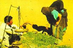 Spice Souk Morocco (Slip Mahoney) Tags: morocco marroc fez agadir casablanca northafrica 35mmslide berber wool rabat calendar souk esouria marakesh marrakesh