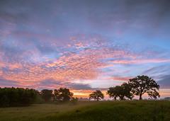 Sunrise 6-23-18 (Craig Hemsath) Tags: 2018 field fog g9 home humid june summer sunrise