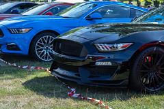 Helmingham hall car show 2018 (ForzaMad17 (Curtis Beadle)) Tags: helmingham helminghamhall cars canon camera carshow suffolk 90mm tse 50mm 50mp classics classiccars classic