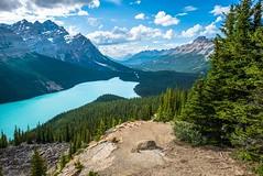 Peyto Lake (karlsjohnson) Tags: hiking karl landscape mountains travel water canada banffnationalpark alberta