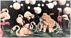 minamikaze180814-2 (minamikaze2010) Tags: wasabi curemore thefantasygacha fantasy lepoppycock pose enchantment gacha frog keke fameshed jian flamingo {anc} princess sweet pink