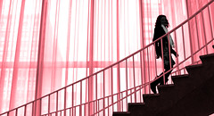 Sashay Silhouette (coollessons2004) Tags: girl woman style flair step stairs stairway red chicago artinstitute architecture