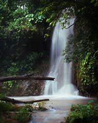 Waterfall in Chiapas 🌿 (Demodragon) Tags: chiapas mexico méxico landscape selva jungle explore nature naturaleza waterfall cascada natgeo green verde