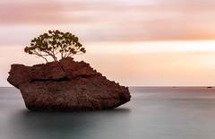 I am a rock (dmunro100) Tags: rock island christmasisland indianocean dawn daybreak longexposure nd 6stop breakthroughphotography