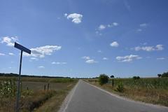 de weg_D710210 (Vogelmelk) Tags: droogte nederland netherlands veluwe