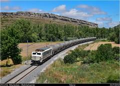 Versión eléctrica (Trenes2000) Tags: trenes tren renfe bioetanol cisternas trenes2000 muriedas babilafuente mave mitshubishi 251 251016 zans bio etanol biodiesel mercancias mercante peligrosas japonesa electrica