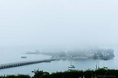 DMP_0454 (alohadave) Tags: bay fog fortrevere hull hullbay massachusetts northamerica overcast pentaxk3 places plymouthcounty season sky stonybeach summer unitedstates water smcpda60250mmf4edifsdm