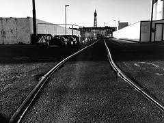 Blundell Street, Blackpool (Rhisiart Hincks) Tags: ráilletrambhealaich blackpool cledrau tramtracks duagwyn gwennhadu dubhagusgeal blackandwhite bw zuribeltz blancetnoir blackwhite lloegr england sasana brosaoz ingalaterra angleterre inghilterra anglaterra 英国 angletèrra sasainn انجلتــرا anglie ngilandi ue eu ewrop europe sirgaerhirfryn lancashire eòrpa europa fylde cyrchfangwyliau holidayresort powsows