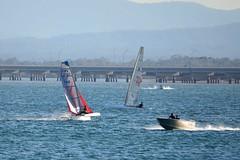 800_4995 (Lox Pix) Tags: queensland qld australia catamaran trimaran hyc humpybongyachtclub winterbash loxpix foilingcatamaran foiling bramblebay sailing race regatta woodypoint boat