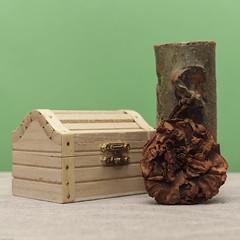 Still Life (N.the.Kudzu) Tags: tabletop stilllife pottery vase wooden box dead dried flower canondslr canonefslens flash lightroom