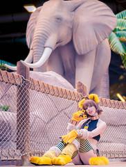 Sphinx by Megan Coffey - starbuxx Kalahari Resort 2018 Monster Girl Encyclopedia Cosplay (WhiteDesertSun) Tags: monster girl encyclopedia sphinx ecchi hentai cat megan coffey starbuxx nya neko kalahari cosplay costume 2018
