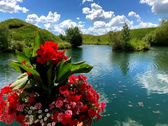 Summer 2018 is finally here! (peggyhr) Tags: peggyhr summer lake flowers clouds reflections hills green red pink blue white bluebirdestates alberta canada
