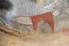 Bovine (John Pavelka) Tags: lasgeel somaliland somalia rockart bovine cattle horns archeology white red polychrome art painting neolithic africa