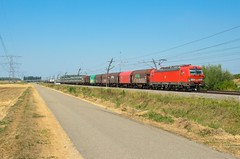 DB Cargo 193 313, Valburg (Sander Brands) Tags: trein treni train treno trenuri trenuro traktion züg güterzug rail railfanning strecke siemens spotten shuttle sun sky br betuweroute nikon d7000 db dbc vectron unit cargo uc