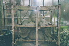 free buddha (neonow) Tags: free tibet buddha cage wallpaper creative commons buddhism film olympus35rc superia400