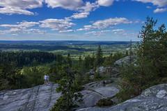 Akka-Koli (aimoräty) Tags: koli akkakoli lieksa finland horizon forest sky clouds