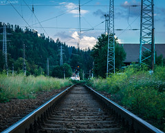 Nature's Way (WT_fan06) Tags: railways tracks wires rails railroads trains green nature contrast sky perspective angle photography trainspotting artsy artistic aesthetic 7dwf flickr coth5 nikon d3400 dslr nikkor forest trees wild light colorful world peaceful decay metal summer august natural naturephotography sunset landscape bird old orange calm quiet predeal romania rumanien clouds clear composition atmosphere mood transportation