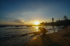 DSC01401 (Damir Govorcin Photography) Tags: sydney sony a7rii zeiss 1635mm water sunset golden hour natural light wide angle boats sky clouds watsons bay sand