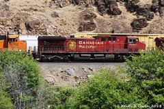 CP 8552 (AC44CW) (youngwarrior) Tags: train deschutescanyon railroad bnsf oil meet ac44cw ge generalelectric locomotive cp canadianpacific oregon