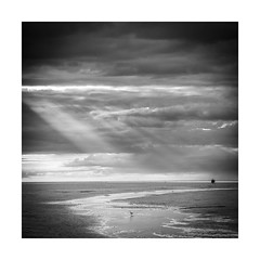 Norfolk11 (ciollileach) Tags: blackandwhite blackandwhitephotography landscapephotography coast sea saltmarsh beach mono contrast norfolk norfolkcoast