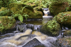 Wyming Brook Nature Reserve (Rocacidi) Tags: landscape water flowing brook nature naturereserve southyorkshire sheffield longexposure beauty peaceful