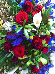 Bouquet Beauty (Steve Taylor (Photography)) Tags: bouquet colourful newzealand nz southisland canterbury christchurch flower flora leaves rose lily iris