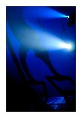 """""""Le Cirque Français"""" (The Blue Water Lily's Company) Tags: fdrouet cirque circus nikon d90 ombre shadow"""
