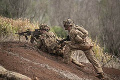 1-21 IN BN CALFEX (Warrior Brigade) Tags: calfex 25thinfantrydivision tropiclightning hawaii haw americasfirstcorps indopacom pacom usarhaw usarmypacific usarmy army 1stbattalion 21stinfantryregiment 121 gimlets departmentofdefense dod usarpac schofieldbarracks unitedstates usa