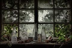 Bottles (ducatidave60) Tags: fuji fujifilm fujinonxf23mmf14 fujixe3 abandoned decay dereliction urbandecay urbex