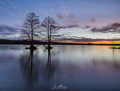 Lake Calm (Wits End Photography) Tags: view pool sunup sunrise cloudy outdoor rural picturesque clouds phototechniques country silhouette form backlight places reservoir outline firstlight natural nature reflection lake longexposure pond trees plant backlit tree water dawn scenic light sky daylight daybreak landscape shape morning
