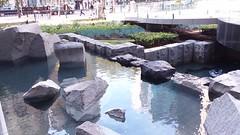 (sftrajan) Tags: 555marketstreet 575marketstreet gardens landscapearchitecture sanfrancisco financialdistrict stone rocks water eau