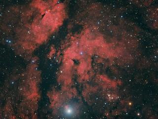 IC1318 - Sadr Region / Gamma Cygni (HaRGB)