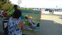 ITA_McA_MdTA_OCBayBridgeBW_081218_09 (Idle Time Ads) Tags: md usa streetteam publicoutreach oceancitymd maryland baybridge boardwalk itapromotions idletimeadvertising mdta