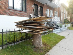 Deconstructed Tree (navejo) Tags: montreal quebec canada tree stump boards construction debris grass fence house window brick