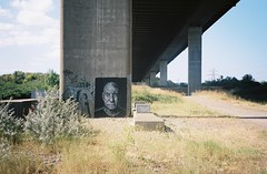 Patrick Stewart under the M5 (knautia) Tags: m5 motorway pill northsomerset england uk august 2018 underthebridge underthem5 bridge film ishootfilm olympus xa2 olympusxa2 nxa2roll53 heatwave graffiti streetart stencil patrickstewart 160iso kodak portra