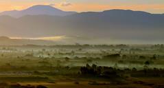 Sunrise (ᙢᗩᖇᓰᗩ ☼ Xᕮᘉ〇Ụ) Tags: westpeloponnes westpeloponnese greece griechenland hellas moments momente landscape view panorama landschaft morgens morning atmosphere light licht himmel sky clouds wolken layers motion emotions emotionen canoneos1100d ηλιοσ πρωι ανατολήηλίου τοπιο δυτικηπελοποννησοσ στιγμεσ πανοραμα ελλασ ελλαδα φωσ ομιχλη πεδιαδα βουνα λοφοι καλοκαιρι summer sommer magic earth erde valley nebel fog