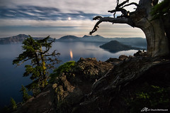 Wizard Island, framed in the moonlight (Matt Straite Photography) Tags: crater lake national park nationalpark night stars blue moon moonlight long tripod landscape wizard island water tree dead scarry canon