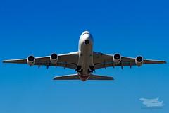 VH-OQC QF A380 34L YSSY-0822 (A u s s i e P o m m) Tags: qantas qf airbus a380 syd yssy sydney sydneyairport mascot