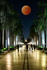 Lunar eclipse moments from Al- Azhar Park, Cairo (basem_teacher) Tags: amazing moments beautiful photoshop awesomeshot egyptian egypt cairo adventure explore night lightroom landscape nikonphotography photographer photography nikond850