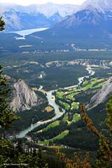 Views over the Bow River Valley from the Sulphur Mountain Gondola, Banff National Park, Alberta, Canada (Black Diamond Images) Tags: sulphurmountain banffnationalpark banff alberta canada mountain lookout view interpretivesign sign scenictours scenic 2012 mountsulphur banffgondola goldola banfflookout sulphurmountainlookout bowrivervalley bowriver banffspringsgolfcourse travelalberta albertatravel albertaholiday holidayalberta