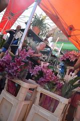 DSC_6395 Columbia Road Sunday Flower Market London Lilies (photographer695) Tags: columbia road sunday flower market london lilies