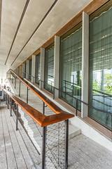 IMG_3714.jpg (patrick t ngo) Tags: architecture downtownmiami herzogdemueron miami museum museumpark pamm pérezartmuseummiami