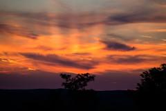 Twilight (Kalmárné Margó) Tags: olympusepl6 nature natur natura sunset puestadelsol sonnenuntergang