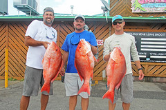 (FWC Research) Tags: atlanticredsnapper redsnapper fisheriesdependentmonitoring snappersamplling